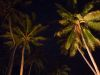 Fiji (2014): At night on Caqalai Island