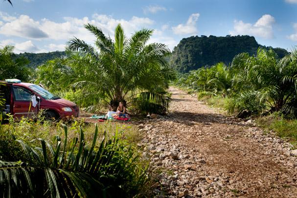 Guatemala: Sleeping in the palm plantage; Photo: Thomas Alboth