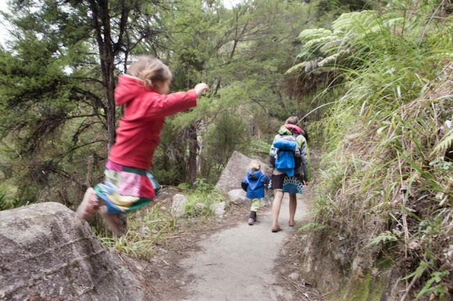 Abel Tasman Naational Park (New Zealand): Hiking