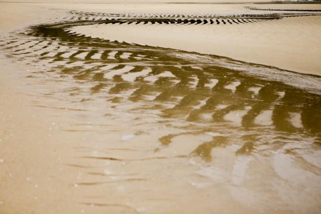 Abel Tasman Naational Park (New Zealand): On the beach