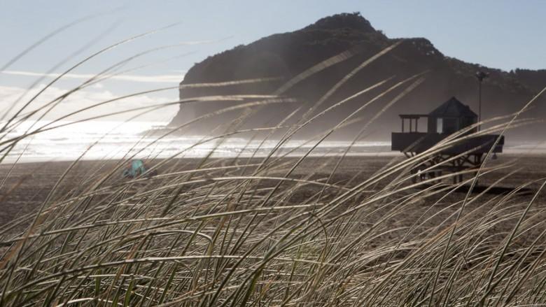 Bethells Beach (New Zealand): Walk at the Bethells Beach on the