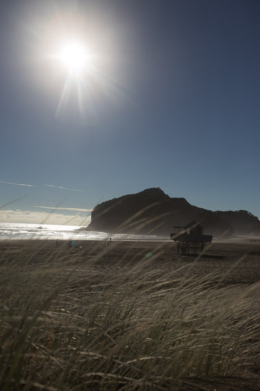 Bethells Beach (New Zealand): Walk at the Bethells Beach on the