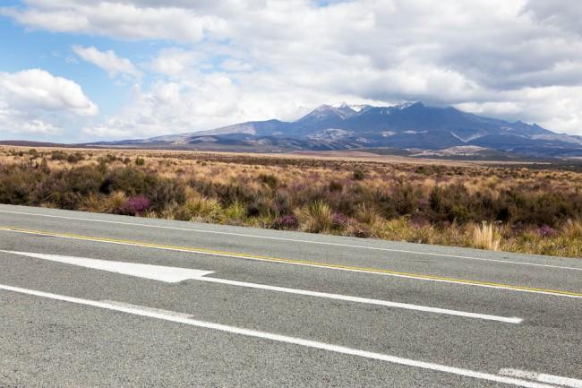 Auf Neuseelands Straßen regiert der Linksverkehr. Doch die Pfeile helfen.