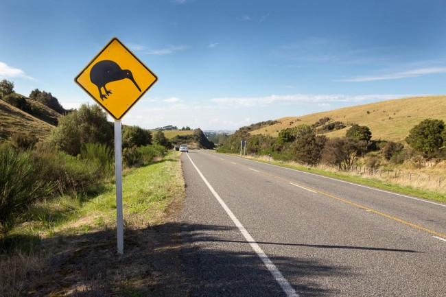Attention Kiwibird Roadsign in New Zealand