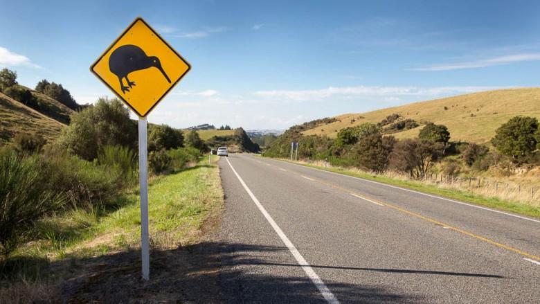 Kiwi-Vogel straßenschild in Neuseeland